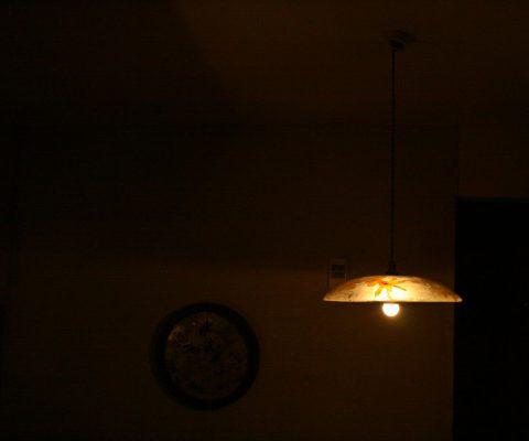 Light and dark -no.004ハマササゲと蜻蛉